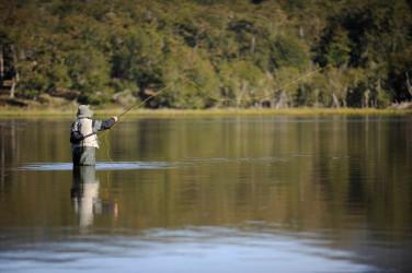 Pescar en ríos y lagos