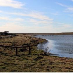 Reserva Natural Urbana Laguna de los Patos
