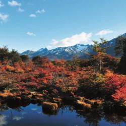 Reserva Natural Privada Cerro Alarken